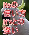 its使い方