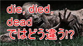 dieddead